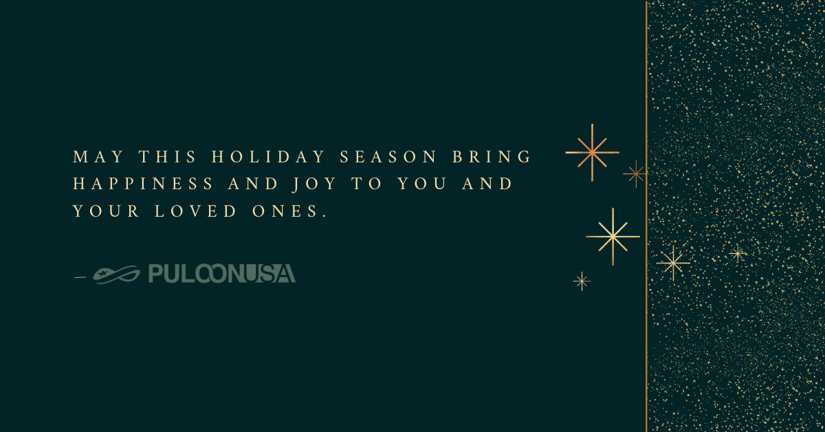 Happy Holidays from Puloon USA!